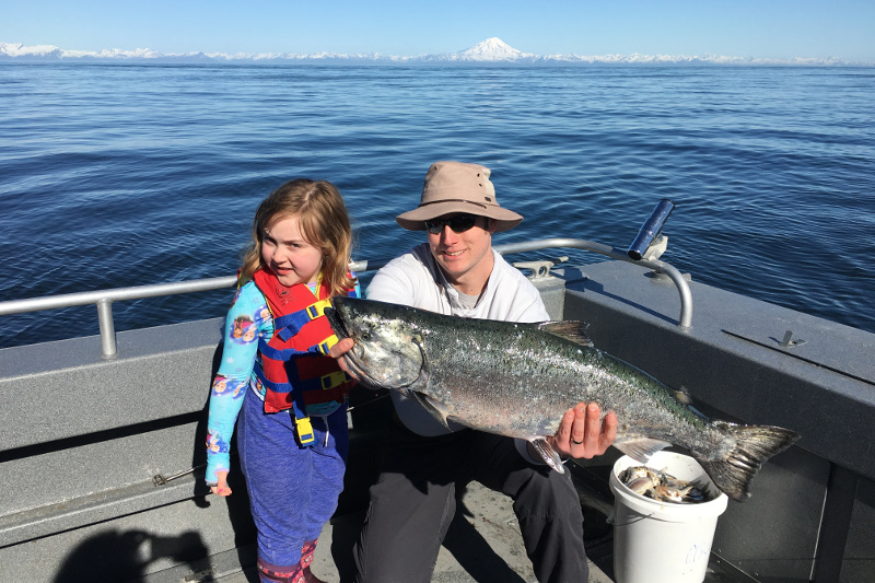 A king salmon on Cook Inlet on the Kenai Peninsula fishing with Gotta Fish Charters
